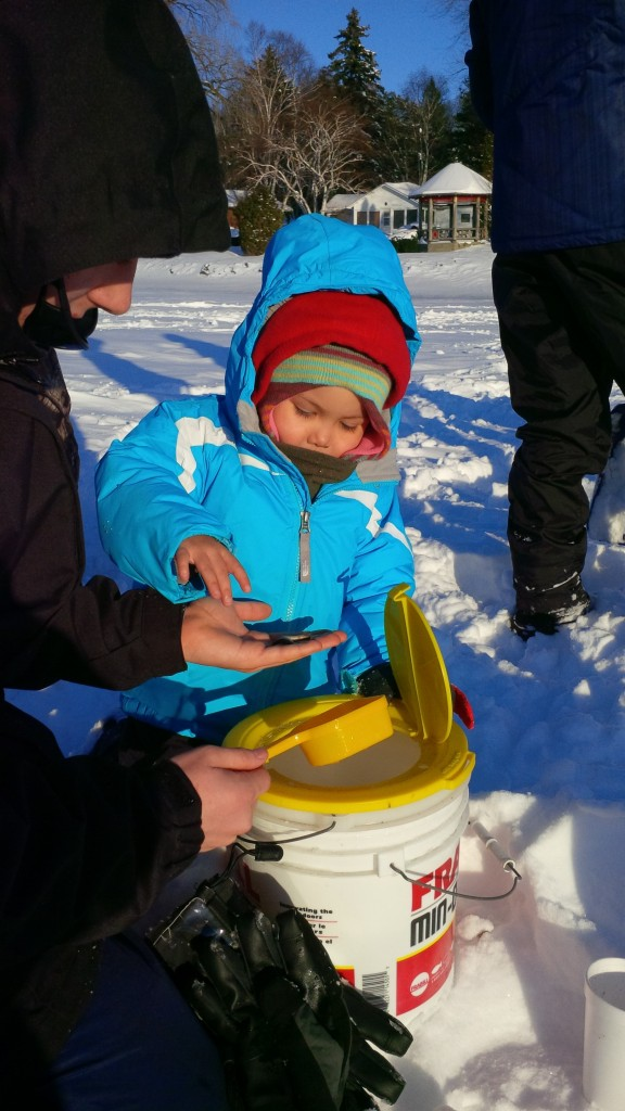 Rasi and her big brother Sequoia going ice fishing for the first time in the Picton Harbour