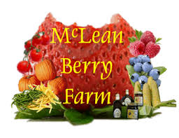 McLean Berry Farm is host to the 22nd Annual Buckhorn Maplefest!