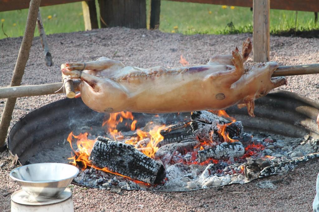 Roast Swine